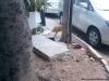 """Um cachorro com fome... que encontrou """"comida"""""""